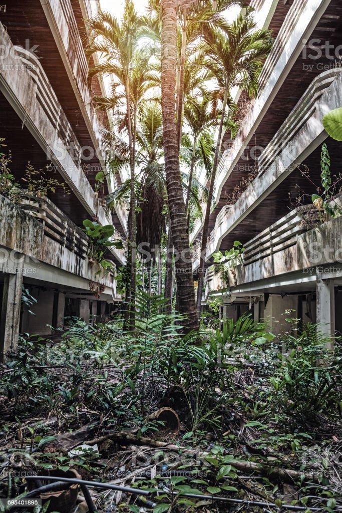 Jungle overgrown buildings stock photo
