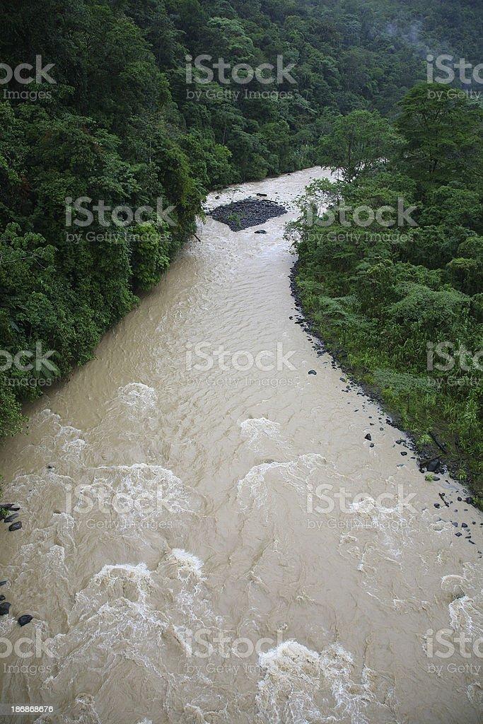 Jungle River royalty-free stock photo