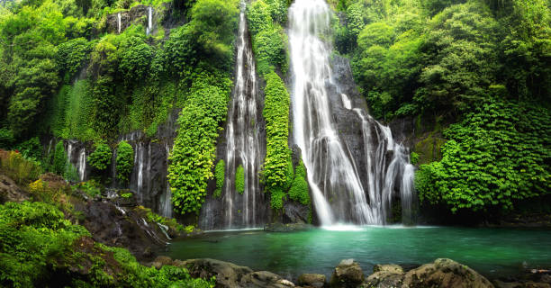 Jungle waterfall cascade in tropical rainforest. Banyumala Twin Waterfall In Bali Jungle Hidden jungle waterfall cascade in tropical rainforest with rock and turquoise blue pond. Its name Banyumala because its twin waterfall in mountain slope indonesia stock pictures, royalty-free photos & images
