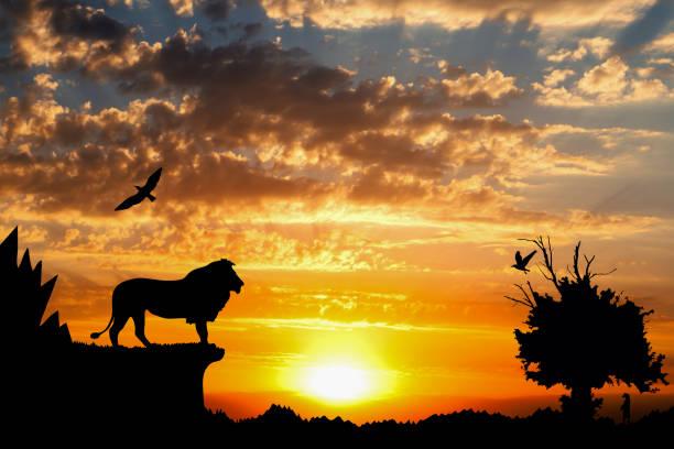 Jungle with mountains old tree birds lion and meerkat on golden picture id696059538?b=1&k=6&m=696059538&s=612x612&w=0&h=fjlp51zwm6z6xvt8z6dpet vlufgoshm2cyktv0nphk=