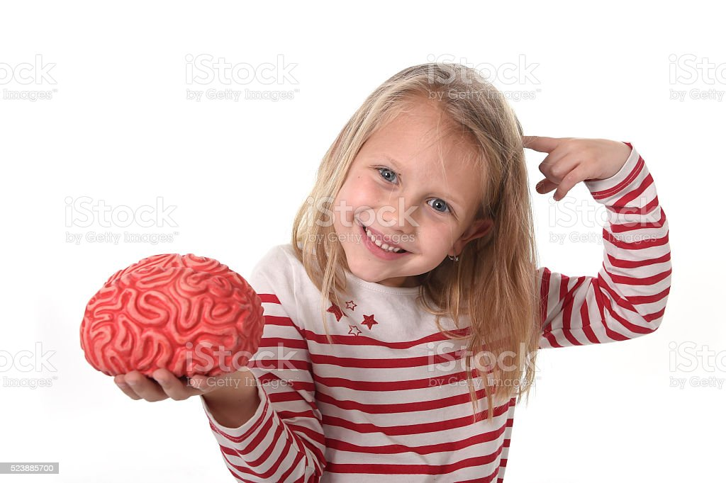 junior schoolgirl playing with rubber brain learning science concept stock photo