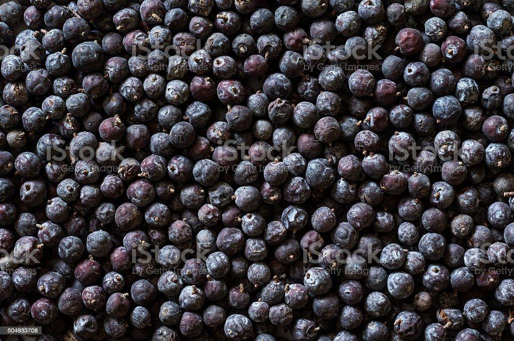 Fundo de frutas silvestres - foto de acervo