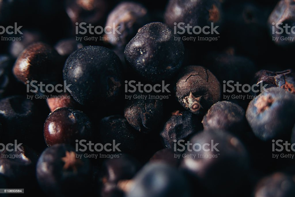 Juniper Berries Close Up stock photo