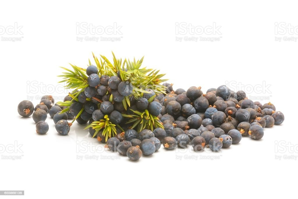 Juniper berries isolated on white stock photo