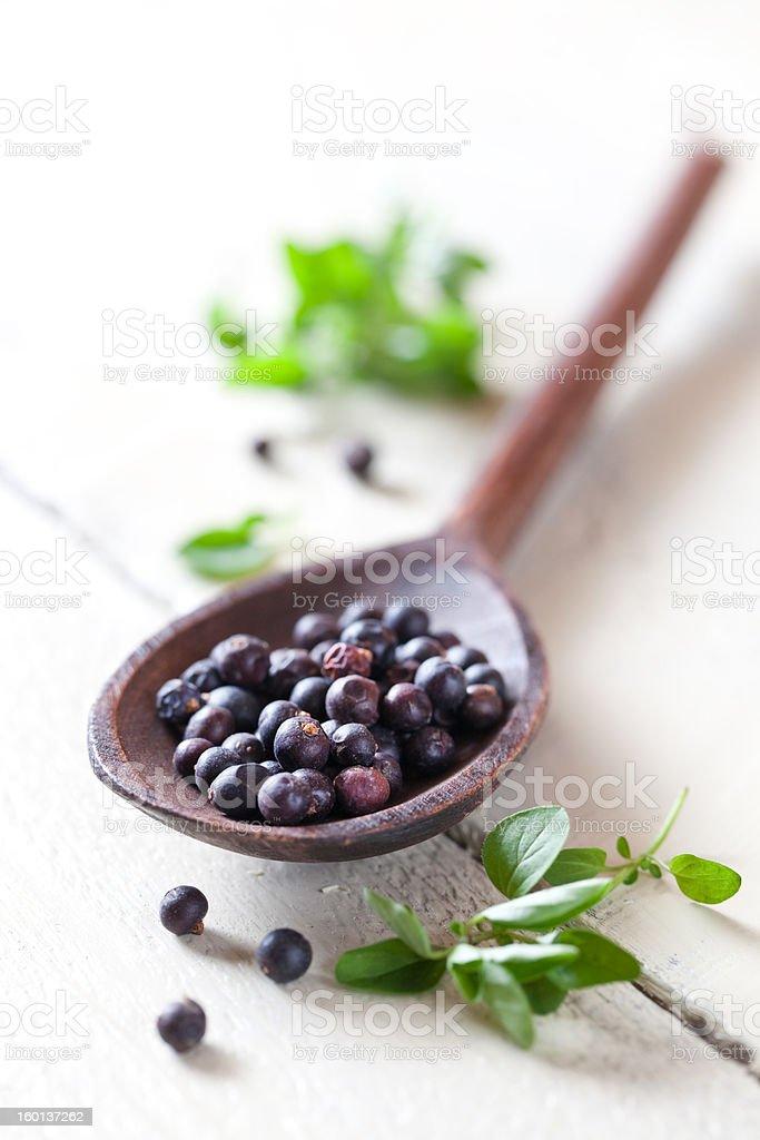 juniper berries royalty-free stock photo