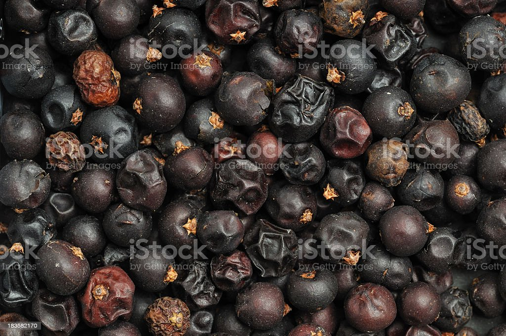 Juniper Berry fondo - foto de stock