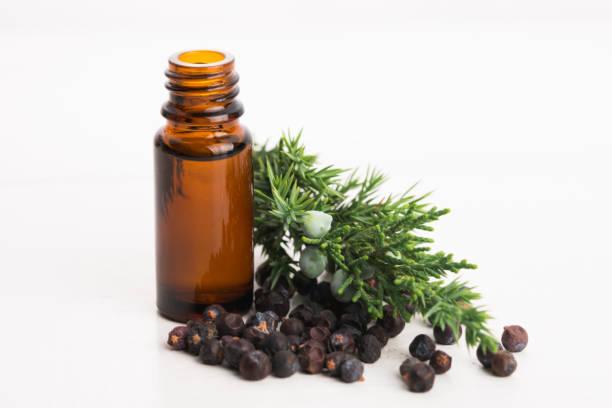 aceite esencial de enebro - foto de stock