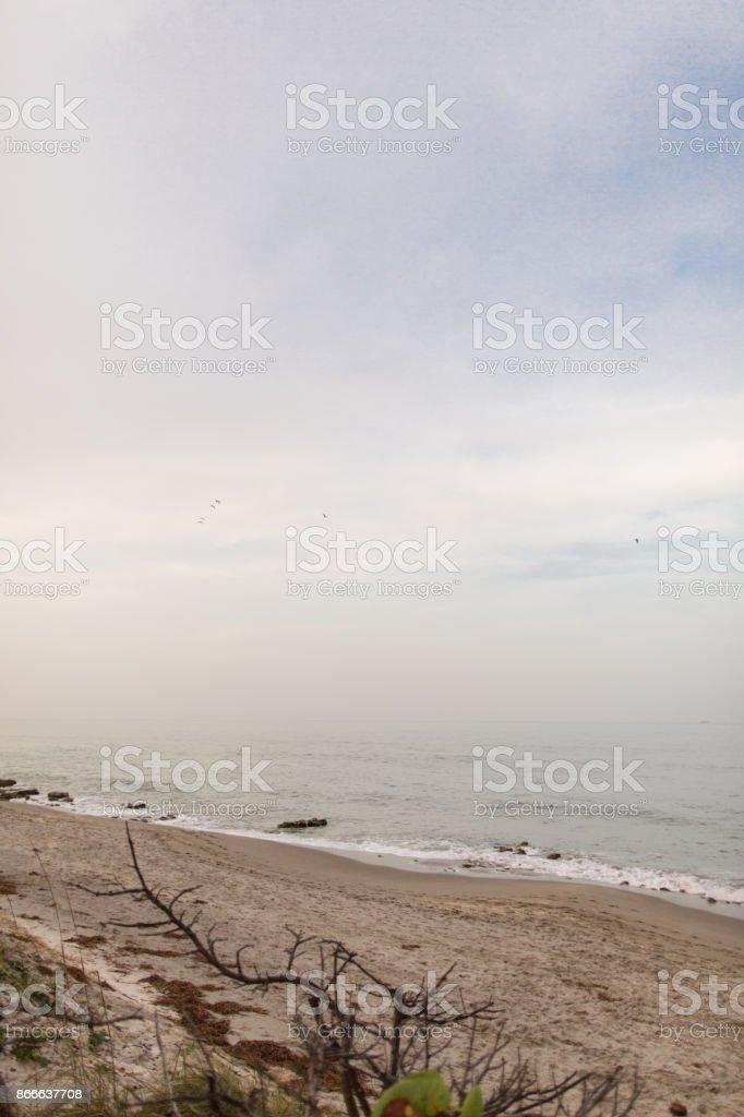 Jupiter Beach Florida stock photo
