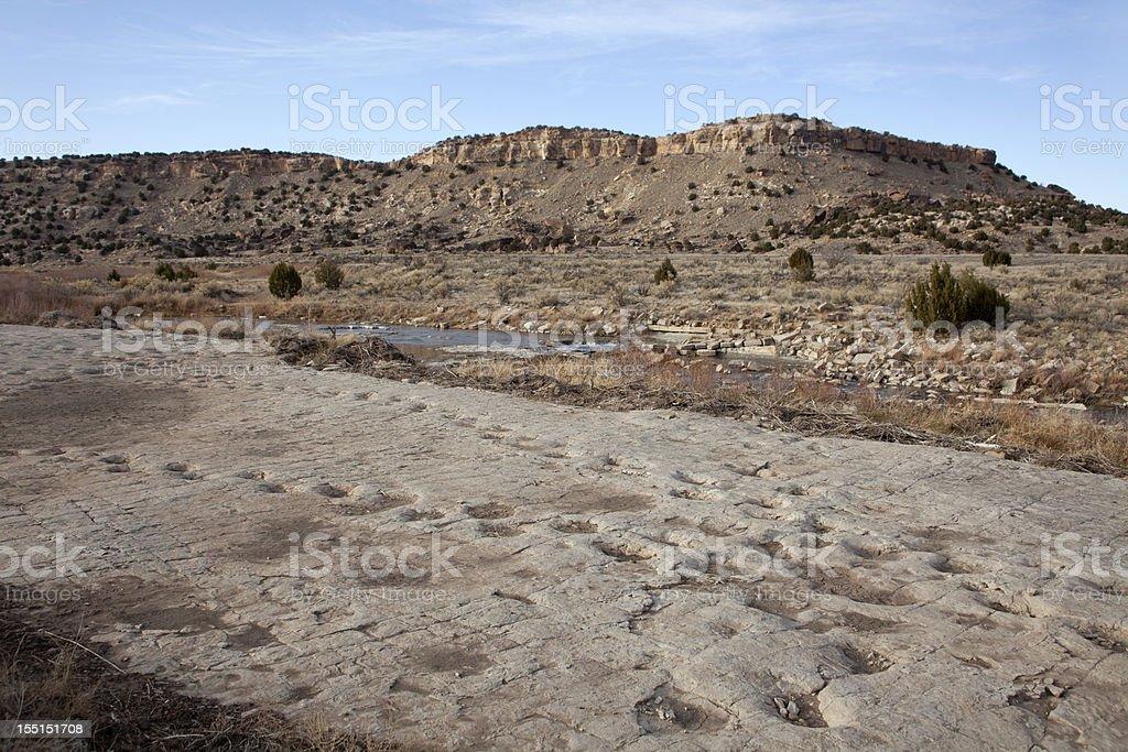 Jurassic Apatosaurus sauropod dinosaur tracksite Purgatoire River Colorado royalty-free stock photo
