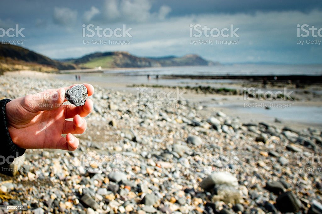 Jurrasic Coast Dorset Hand holding an ammonite fossil found in the rocks on the beach between Lyme Regis and Charmouth. In the background is Charmouth and other fossil hunters. 2015 Stock Photo