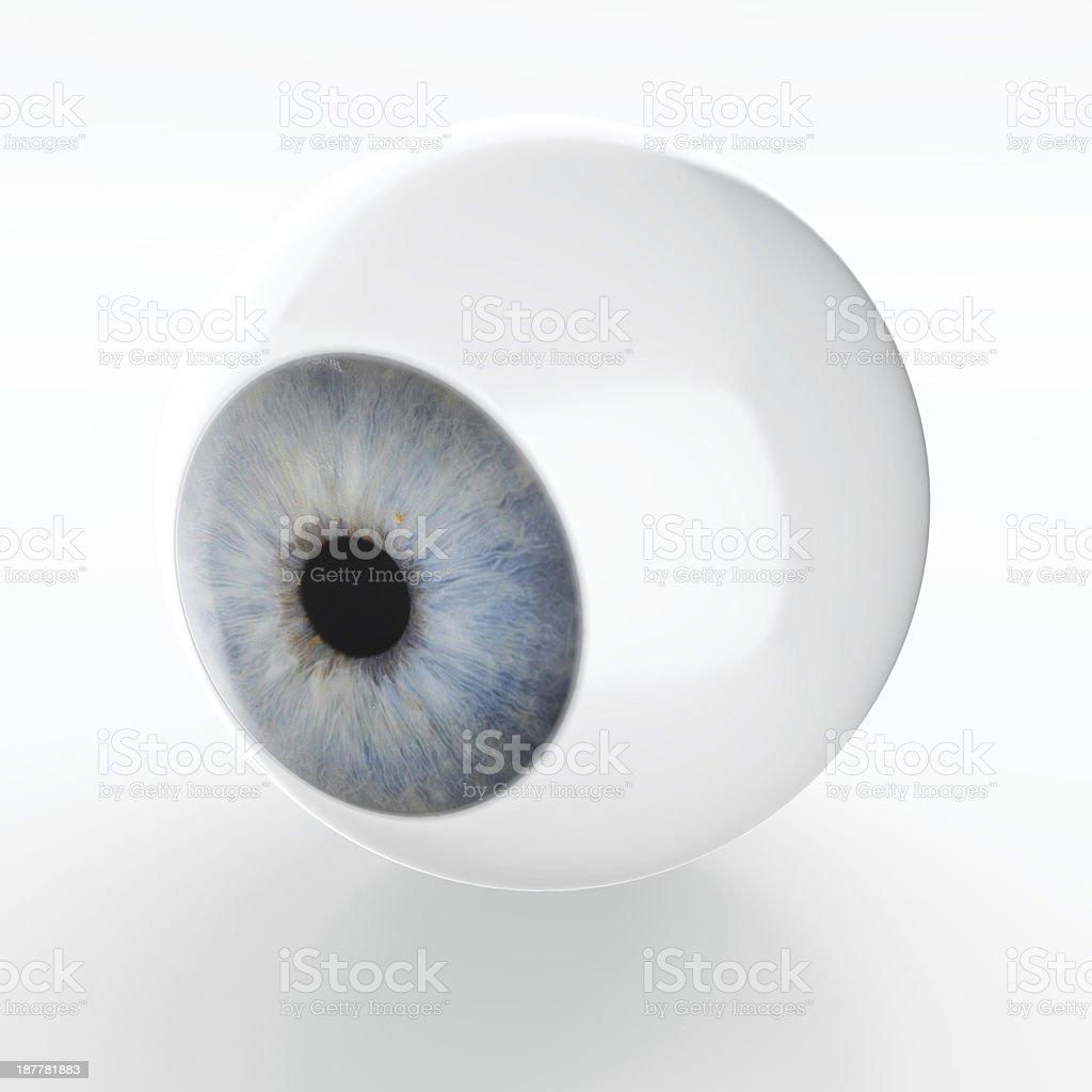 Just an eye stock photo