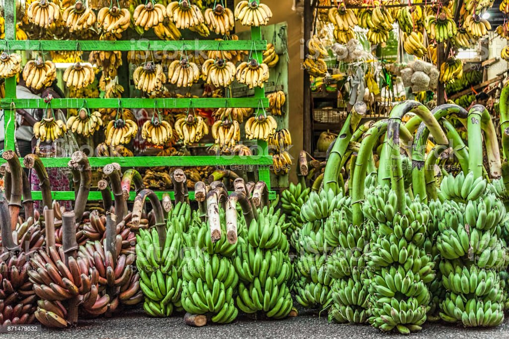 Just Bananas. A store selling only bananas. stock photo
