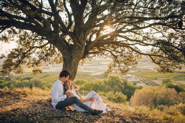 frisch verheiratete paar unter einem schönen baum - hochzeitsfrisur twilight stock-fotos und bilder