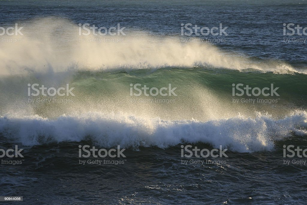 Just surf me! stock photo