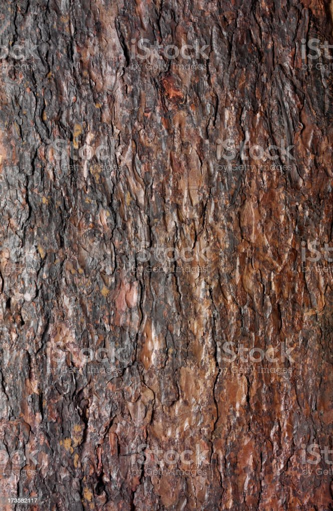 Just wood royalty-free stock photo