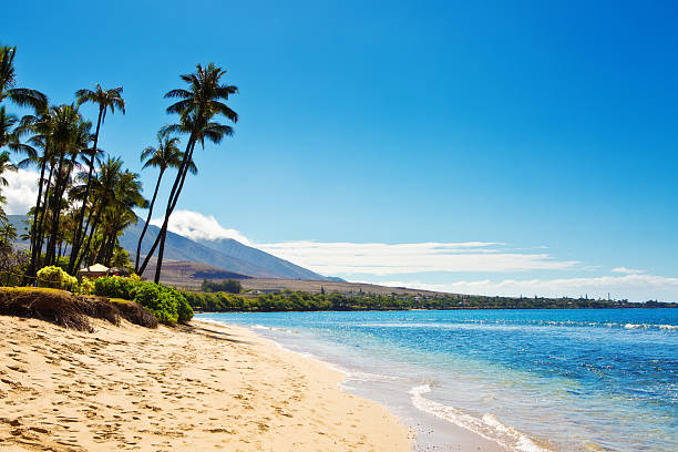 Kaanapali Beach and resort Hotels on Maui Hawaii stock photo