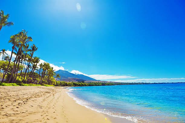 カアナパリビーチホテル、マウイ・リゾートで、ハワイ - 海岸 ストックフォトと画像