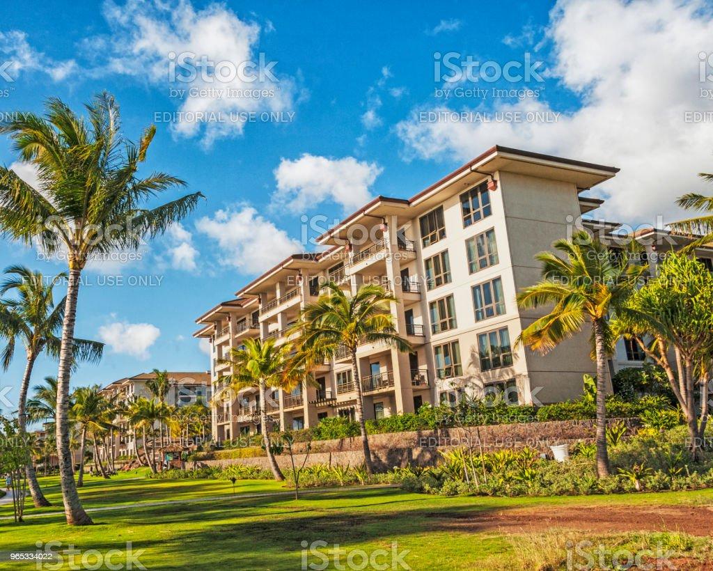 卡納帕裡夏威夷度假村放鬆和享受 - 免版稅兒童圖庫照片