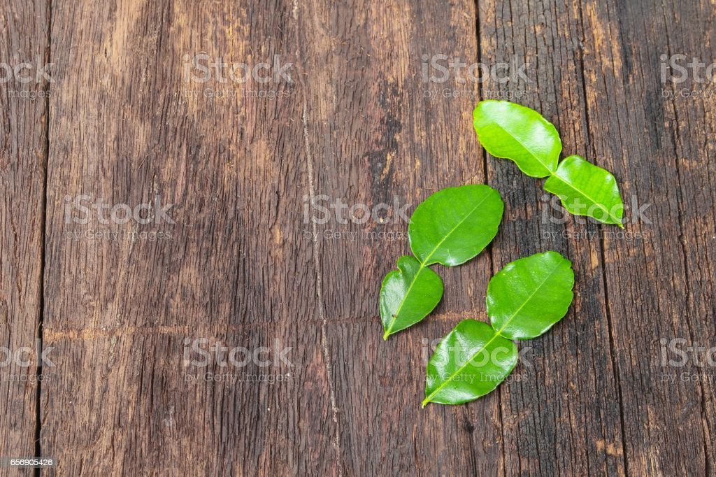 Kaffir lime leaves on wooden floor background stock photo