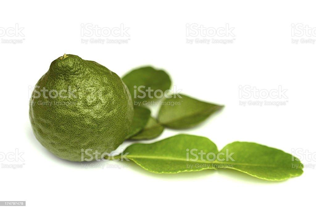 Kaffir Lime or Bergamot fruit and leaf isolated stock photo