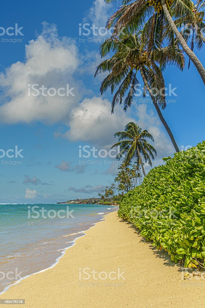 Kahala Beach 2 stock photo