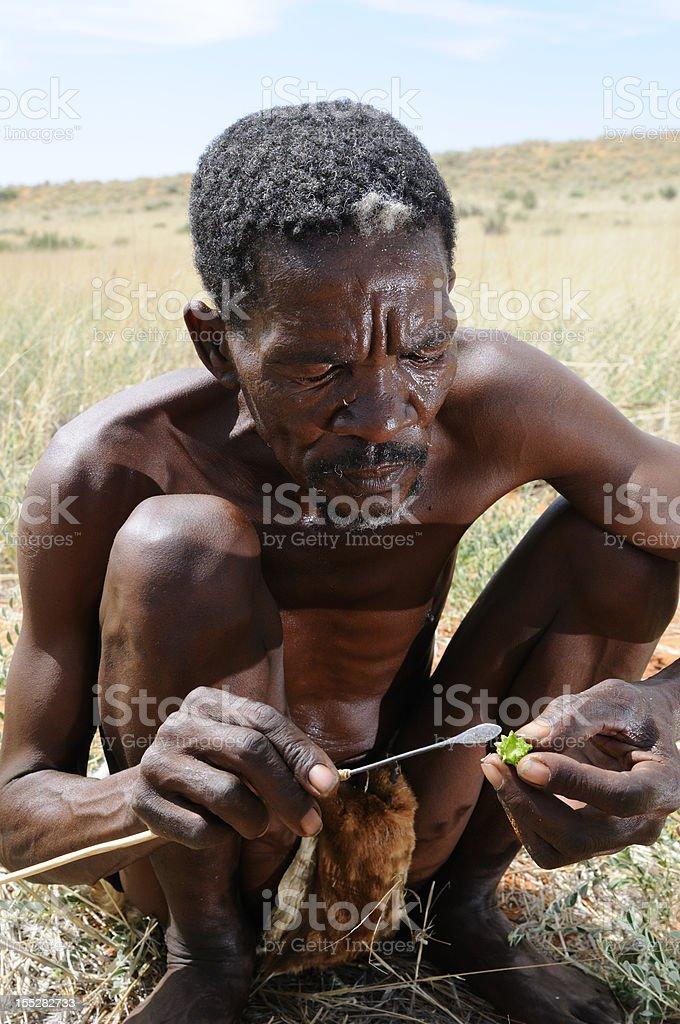 Eating Christmas In The Kalahari.Kalahari Bushman Eating Hoodia Plant Stock Photo Download
