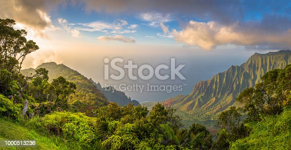 Island, Pacific Ocean, Sea, Tree, Tropical Climate