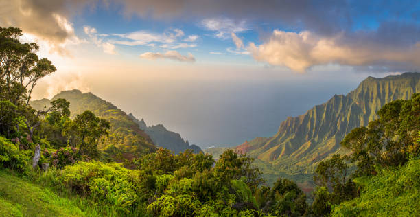 kalalau lookot view - pacific islands stock pictures, royalty-free photos & images
