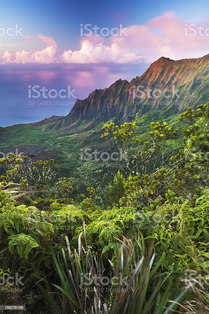 Kalalau Valley at Dusk stock photo