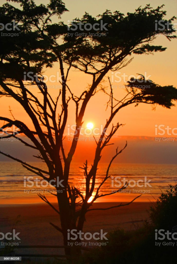 The sun slowly begins in decent in the west near Kalaloch on the...