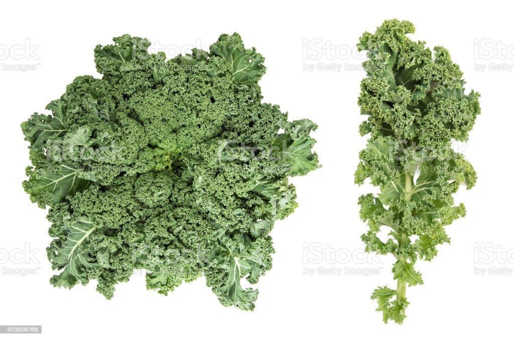 Kale cabbage Green vegetable leaf Healthy eating Super foods stock photo