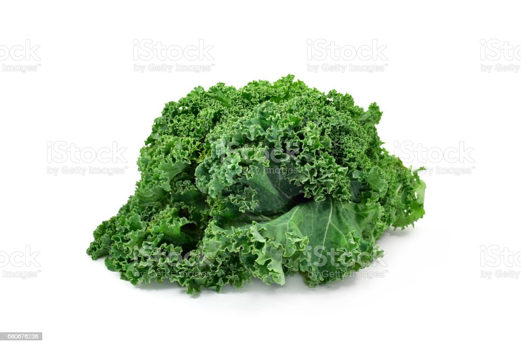 kale leaves stock photo