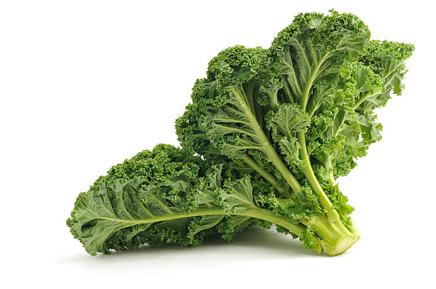 Kale Curly Leaved Kale isolated on a white background. kale stock pictures, royalty-free photos & images