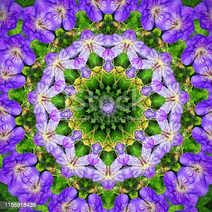 Square picture of an abstract kaleidoscope pattern with blue geranium rozanne flowers.