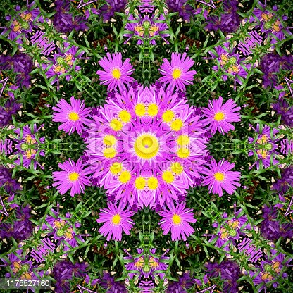 Square picture of an abstract kaleidoscope pattern with aster flowers.