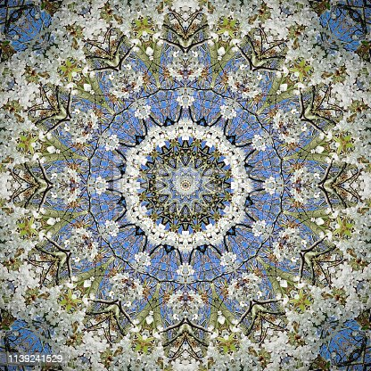 Abstract  kaleidoscope pattern with blooming flowers of a fruit tree in springtime.