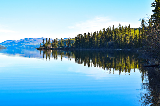 clear morning reflection of forest and mountains in calm lake