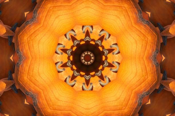 Kaleidoskop-Kürbisse – Foto