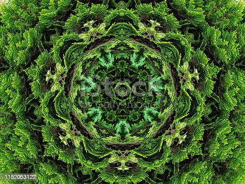 istock Kaleidoscopic oil paint leaf background 1152053122