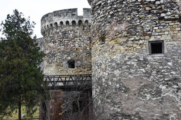 kalemegdan park belgrade fortress - belgrade serbia stock photos and pictures