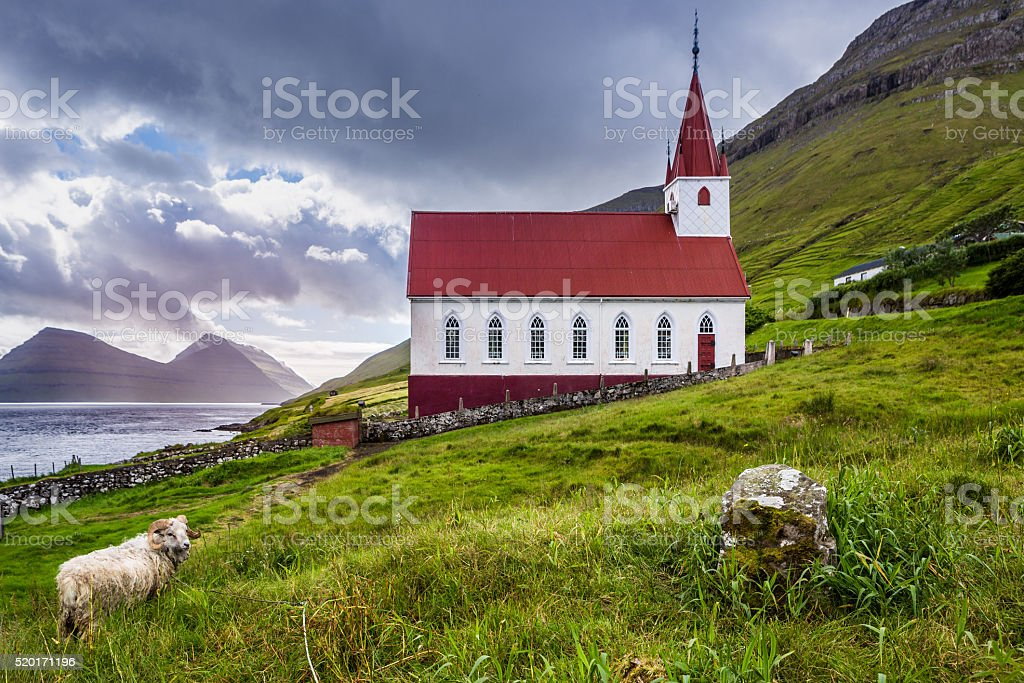 Kalsoy church in Faroe Islands whit sheep stock photo