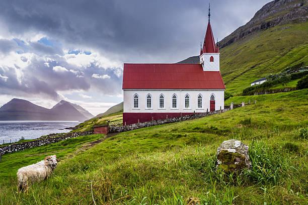 kalsoy church in faroe islands whit sheep - faeröer stockfoto's en -beelden