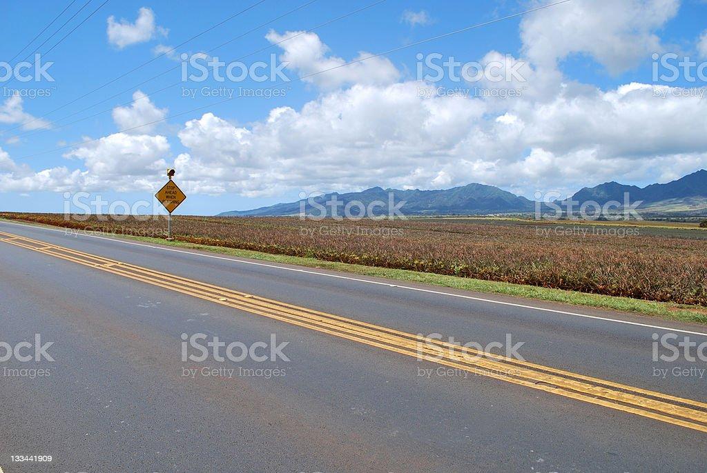 Kamehameha Highway in Central Oahu Island, Hawaii royalty-free stock photo