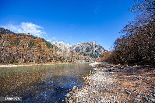 Kamikochi Japan, Azusagawa river and Larch trees,Kamikochi National Park in the Northern Japan.
