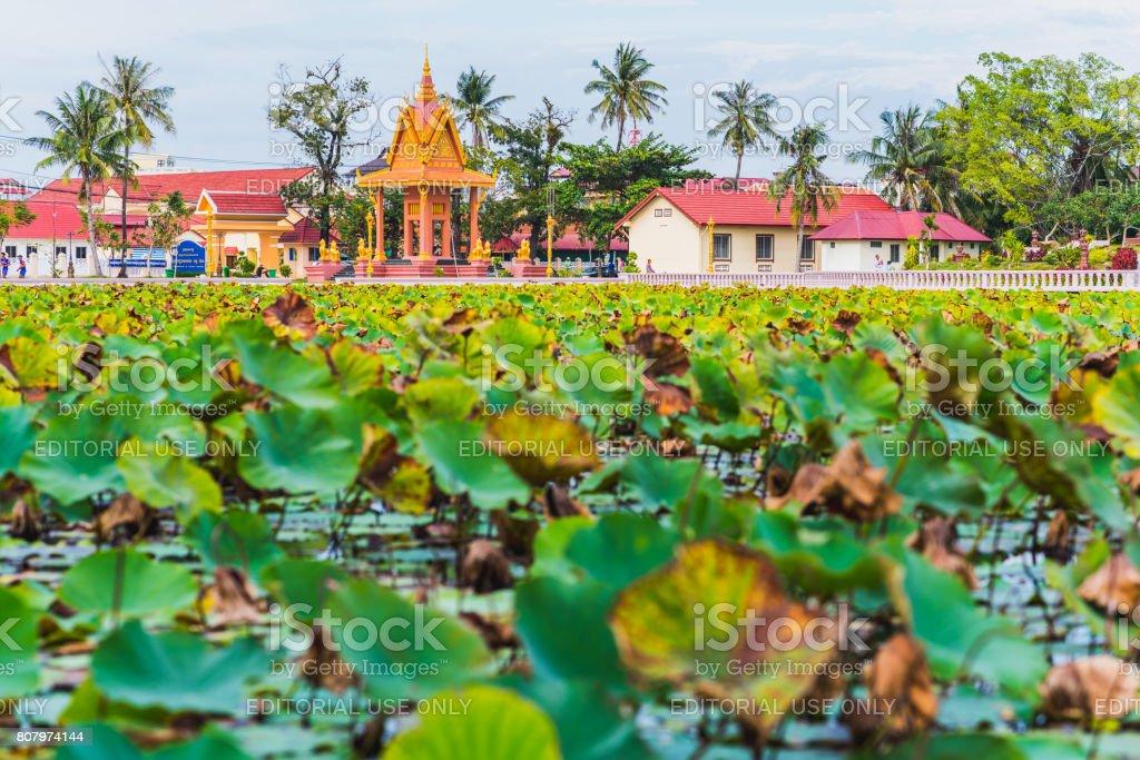 Kampot, Kambodscha, der Lotus-Teich – Foto