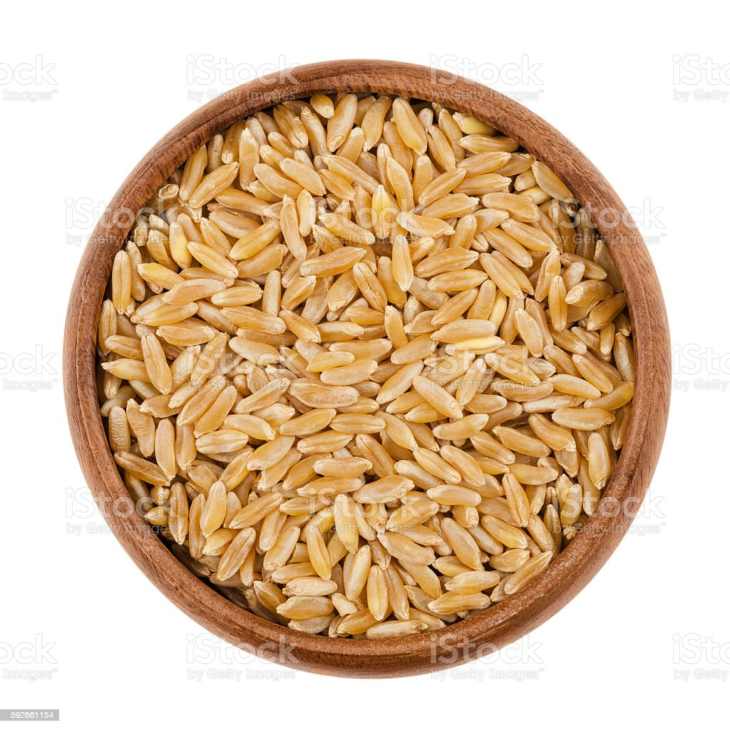 Kamut Khorasan wheat in a bowl over white stock photo