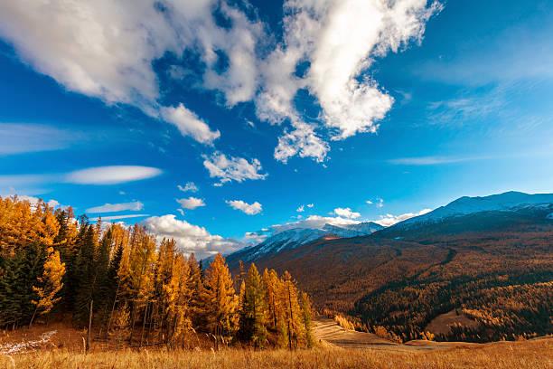 kanas mountain view ,  xinjiang, china - państwowy rezerwat przyrody altay zdjęcia i obrazy z banku zdjęć