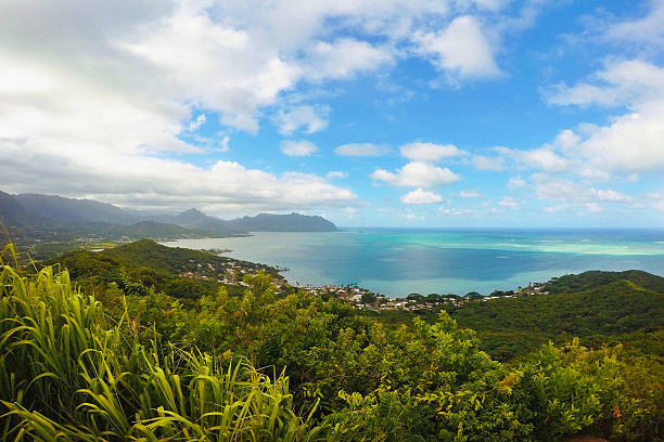 Kaneohe Bay Travel Location Tropical Landscape View – Foto