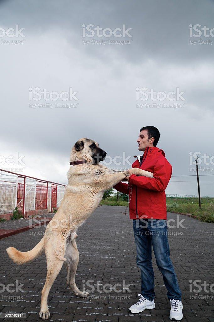 Kangal Dog and man Man