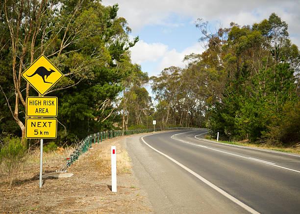 Kangaroo crossing road sign in Victoria, Australia stock photo